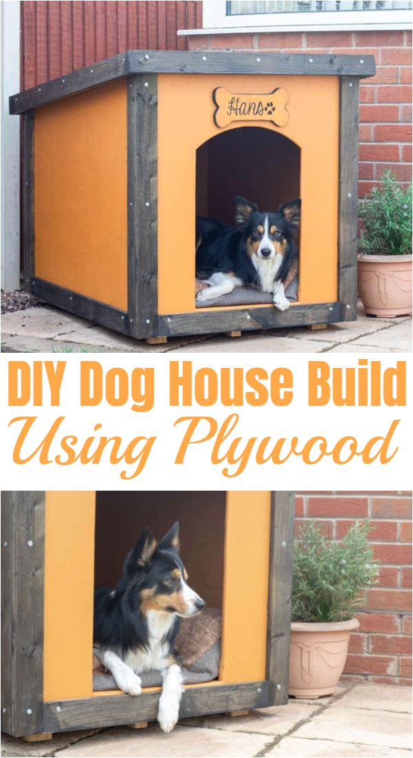 DIY Dog House Build Using Plywood