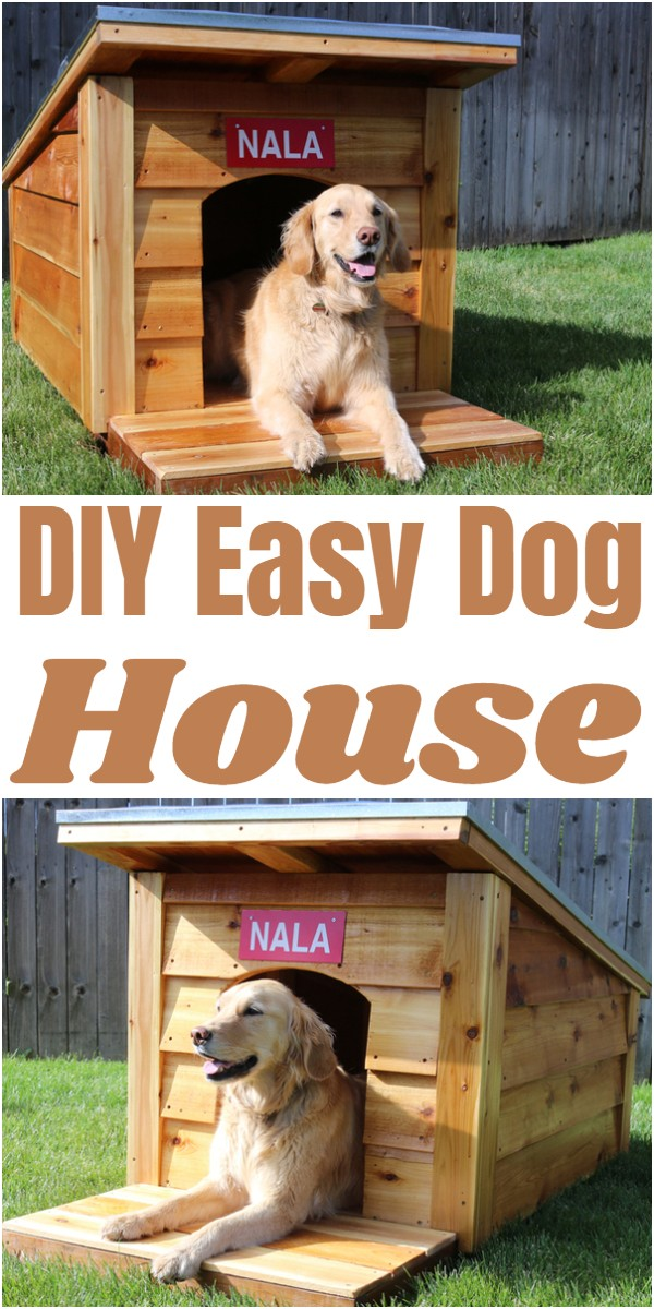 DIY Easy Dog House