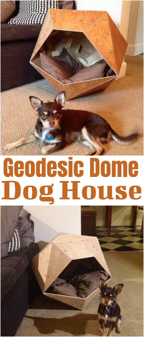Geodesic Dome Dog House