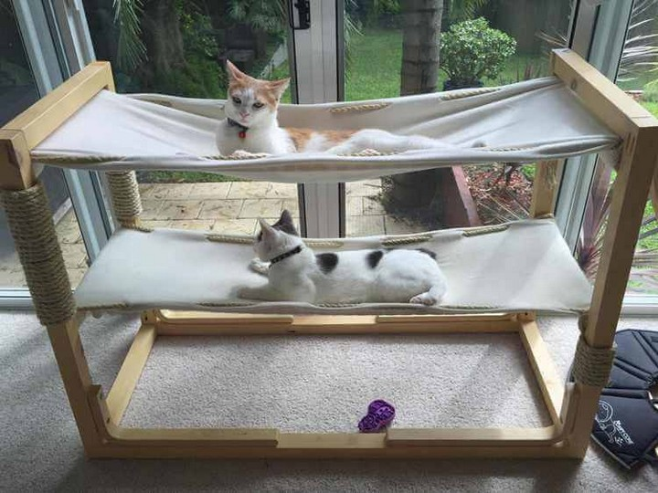 Build Bunk Bed Hammock For Cats