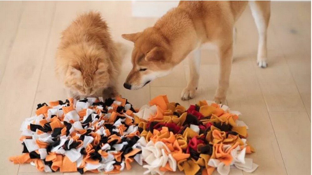 How To Make A Snuffle Mat For Dogs
