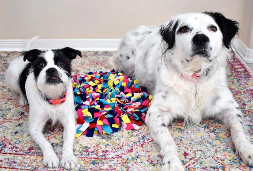 How To Make A Snuffle Mat